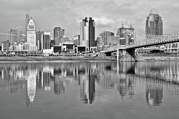Wall Art - Photograph - Cinci In Black And White 2015 by Frozen in Time Fine Art Photography
