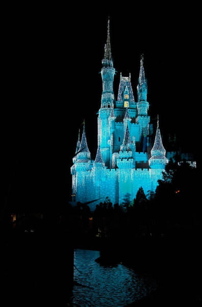 Photograph - Cinderella's Castle 1 by Frank Mari