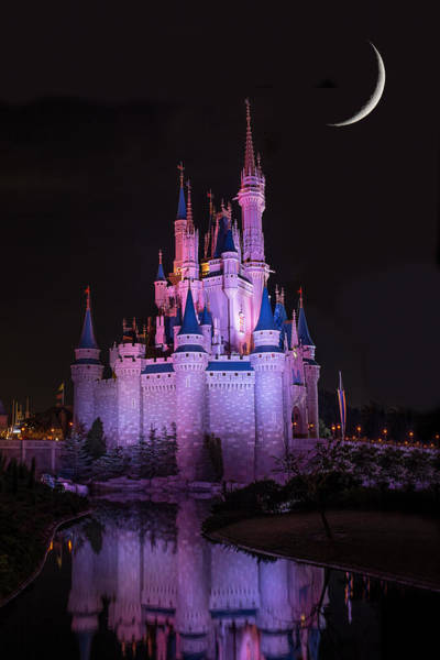 Photograph - Cinderella's Castle Under A Crescent Moon by Chris Bordeleau