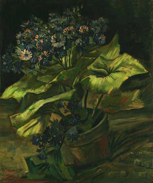Big Small Painting - Cineraria's by Vincent van Gogh