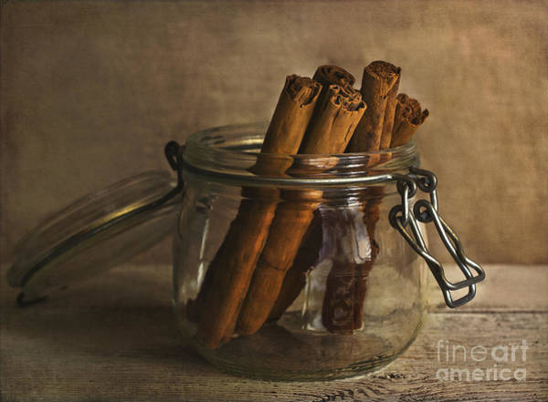 Recipe Photograph - Cinnamon Sticks In A Glass Jar by Elena Nosyreva
