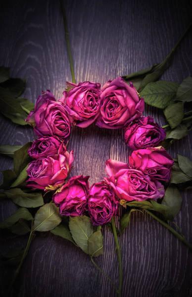 Wall Art - Photograph - Circle Of Roses by Svetlana Sewell