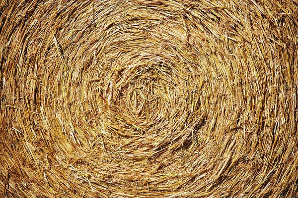Photograph - Circle Of Straw by Todd Klassy
