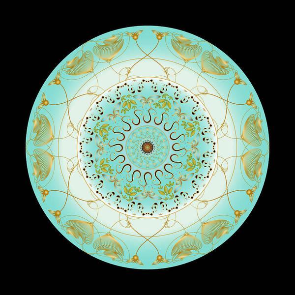 Digital Art - Circularium No 2716 by Alan Bennington