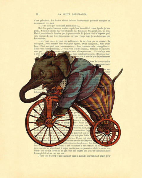 Circus Wall Art - Digital Art - Circus Elephant On Bicycle by Madame Memento