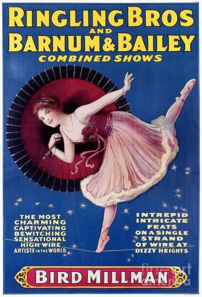 Bailey Photograph - Circus Poster, C1920 by Granger