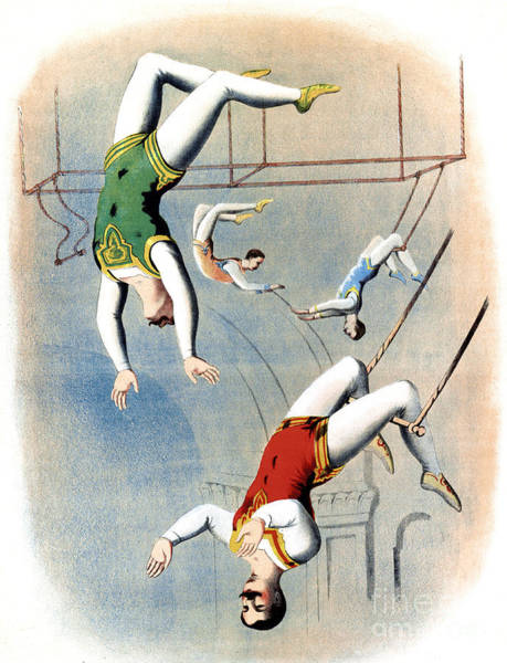 Trapeze Photograph - Circus Trapeze Act, 1875 by Science Source