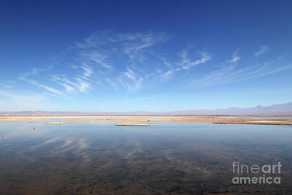 Photograph - Cirrus Cloud Reflections In Laguna De Chaxa Chile by James Brunker