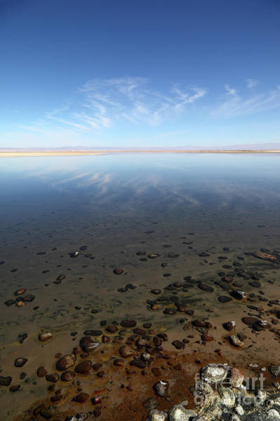 Photograph - Cirrus Clouds And Pebbles In Laguna De Chaxa Chile by James Brunker