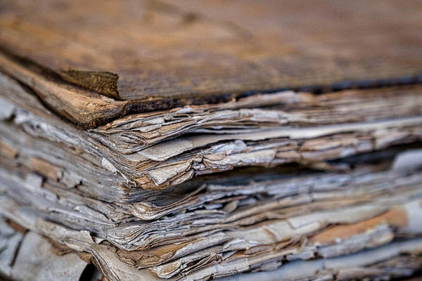 Photograph - Cistercian Monastery Library Book #2 by Stuart Litoff