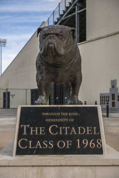 Photograph - Citadel Bulldog by Dale Powell