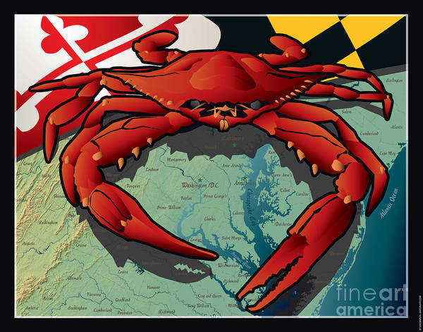 Citizen Crab Of Maryland Art Print