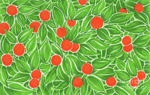 Drawing - Citrus Pattern by Cindy Garber Iverson