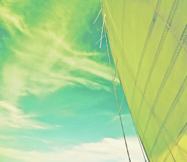 Wall Art - Photograph - Citrus Sail Special Edition by Tony Grider