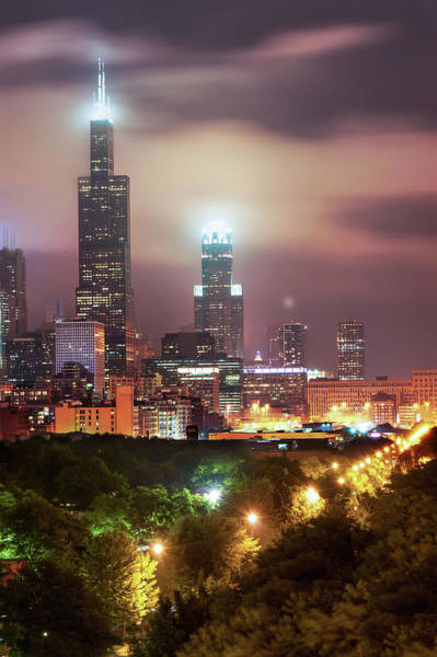 Photograph - City Of Chicago Skyline Over The Trees by Gregory Ballos