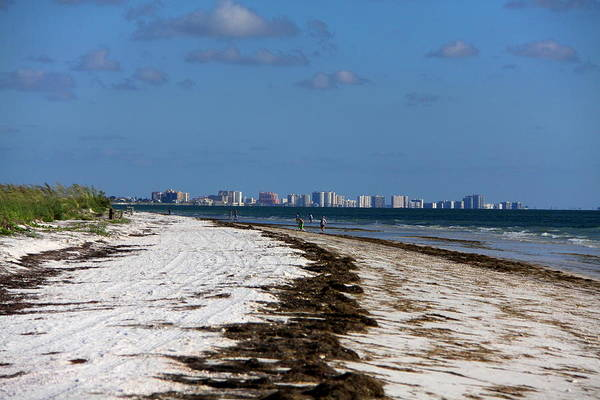 Photograph - City Of Clearwater Skyline by Barbara Bowen
