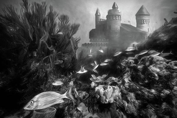 Photograph - City On The Reef In Black And White by Debra and Dave Vanderlaan