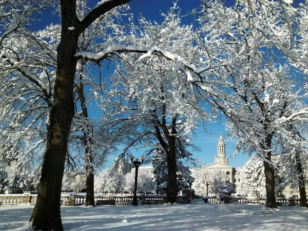 Photograph - Civic Center After Blizzard by Marilyn Hunt