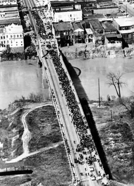 Wall Art - Photograph - Civil Rights March Selma To Montgomery by Everett