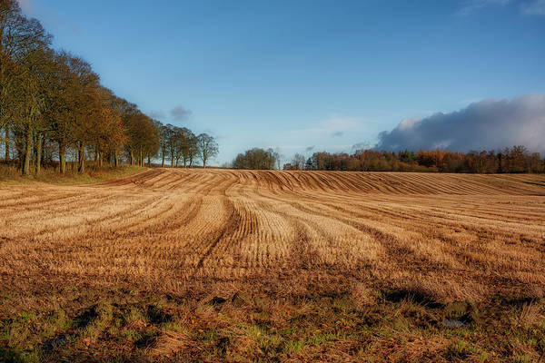 Photograph - Clackmannanshire Countryside by Jeremy Lavender Photography