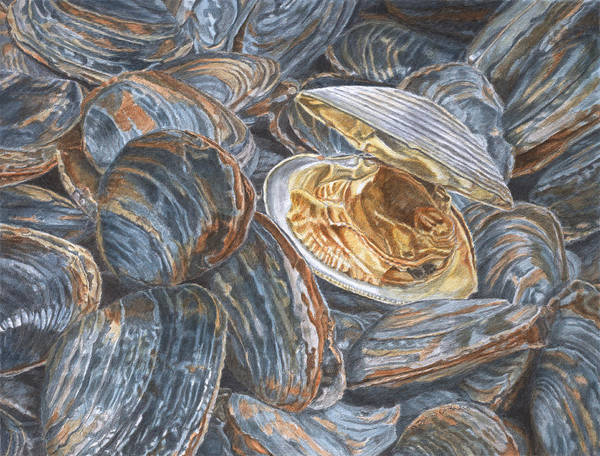 Painting - Clams by Dominic White