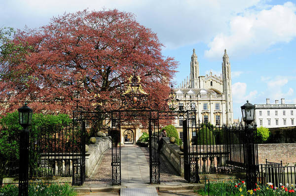 Wall Art - Photograph - Clare Bridge And Kings College Chapel by Liz Pinchen
