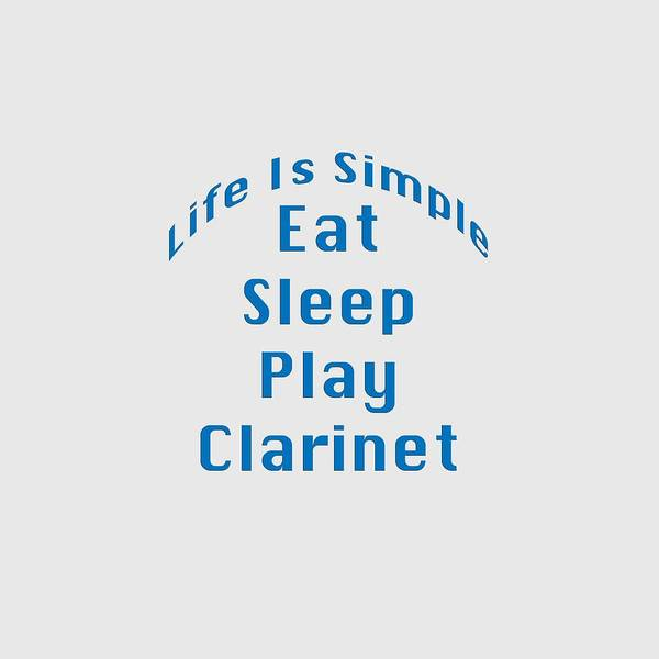 Photograph - Clarinet Eat Sleep Play Clarinet 5512.02 by M K Miller