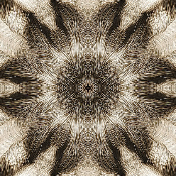 Clarity Digital Art - Clarity by Becky Titus