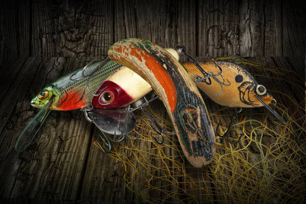 Angler Art Photograph - Classic Crankbaits by Randall Nyhof