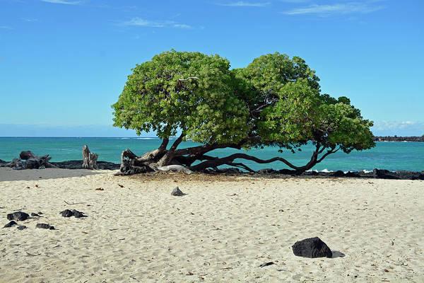Photograph - Classic Hawaii Beach Landscape by Bruce Gourley