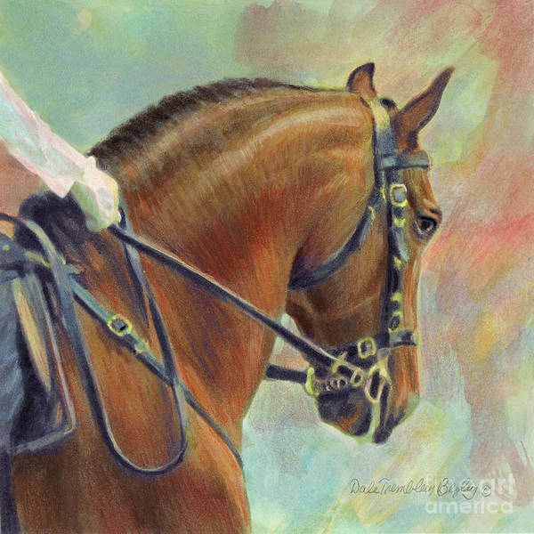 Horsemanship Painting - Classic Lusitano 3 by Dale Tremblay