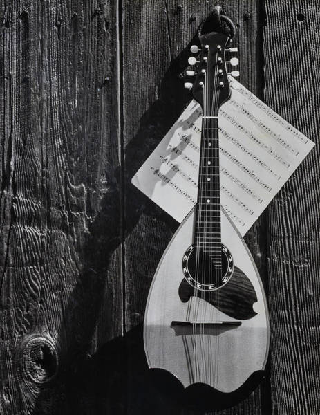 Sheet Music Photograph - Classic Mandolin Hanging On Wall by Garry Gay