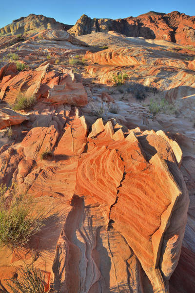 Photograph - Classic Valley Of Fire Sunrise by Ray Mathis