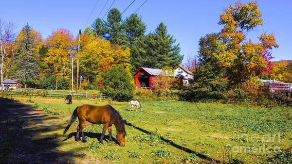 Photograph - Classic Vermont Scene. by New England Photography