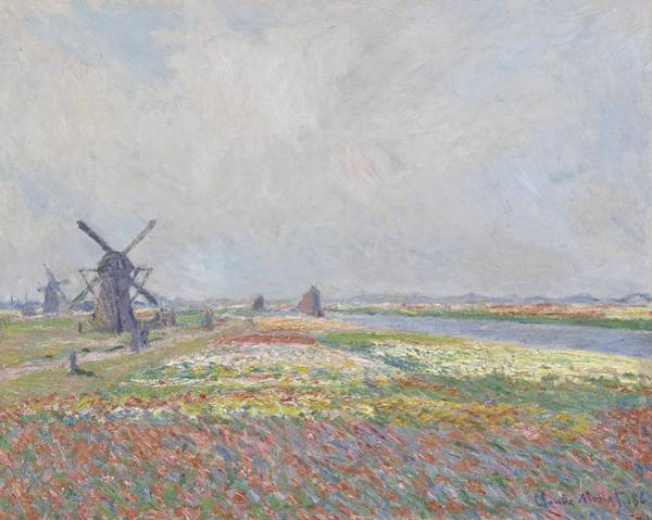 Wall Art - Painting - Claude Monet - Tulip Fields In Holland by Celestial Images