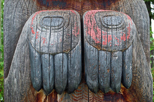 University Of Alaska Photograph - Claws by Cathy Mahnke