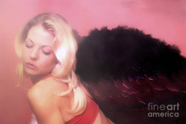 Photograph - Clays Fallen Angel Series No 4 by Clayton Bruster