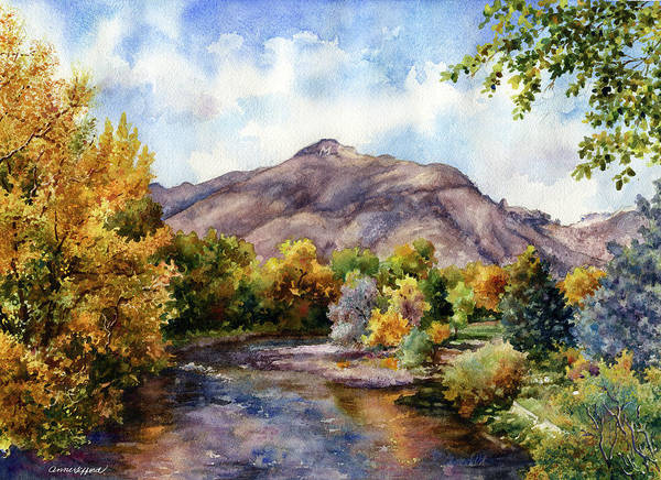 Painting - Clear Creek by Anne Gifford