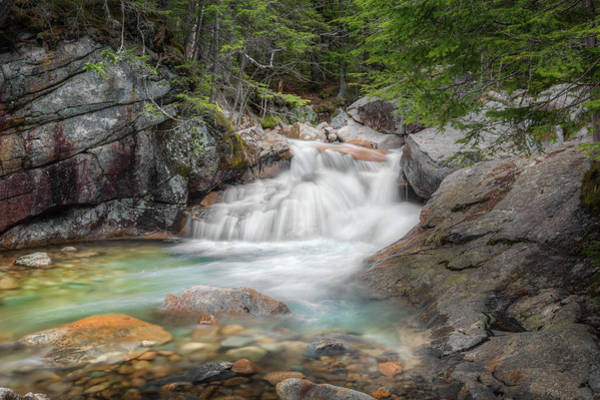 Photograph - Clear Mountain Stream by Bill Wakeley