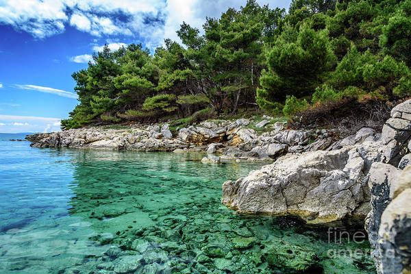 Photograph - Clear Turquoise Water Of Rab, Croatia by Global Light Photography - Nicole Leffer