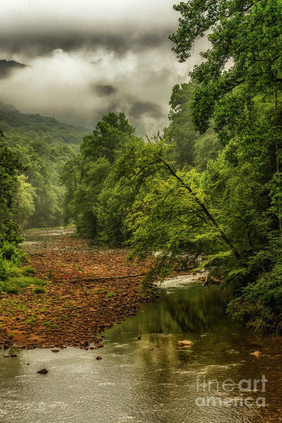 Photograph - Clearing Storm Williams River by Thomas R Fletcher
