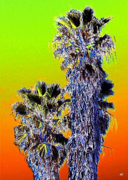 Cheery Digital Art - Clearlake Palm Trees by Will Borden