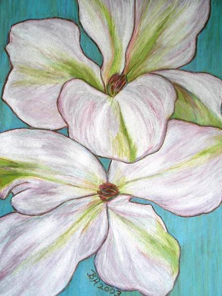 Drawing - Clematis by Beth Akerman