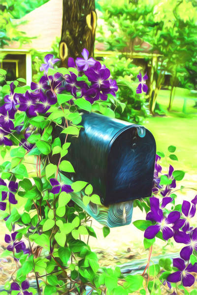 Painting - Clematis On The Mailbox - Digital Painting by Barry Jones