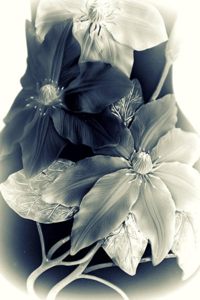 Clematis Wall Art - Photograph - Clematis Tones by Jessica Jenney