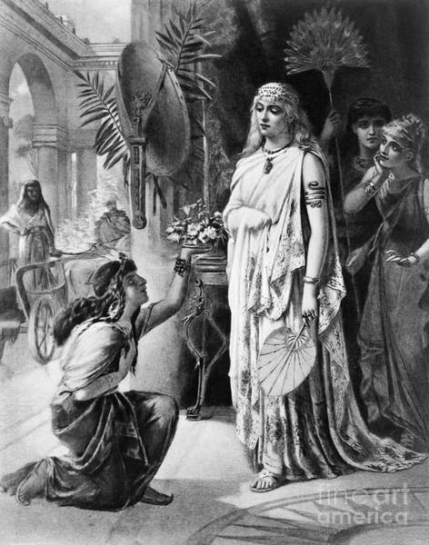 Drawing - Cleopatra Vii. by Granger