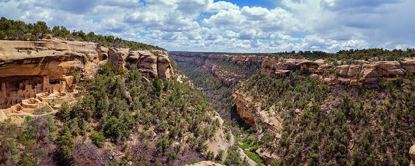 Photograph - Cliff Palace Mesa Verde by Joan Carroll