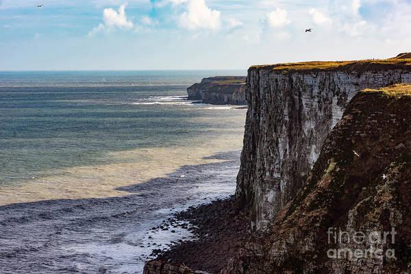 Photograph - Cliffs Of Bempton by Anthony Baatz