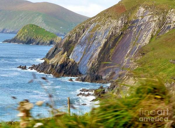 Photograph - Cliffs Of Dingle Bay by Rosanne Licciardi