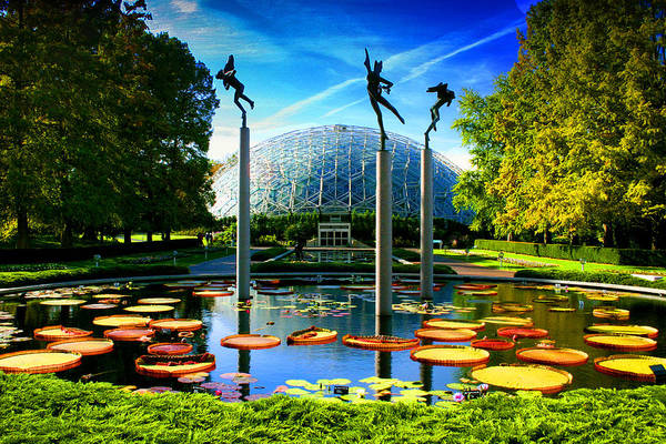 Photograph - Climatron Missouri Botanical Garden by Patrick Malon